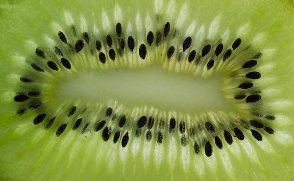 Fruit Burst by lespaul