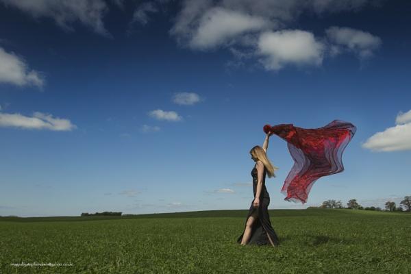 walk with me by imagesbystephendavis