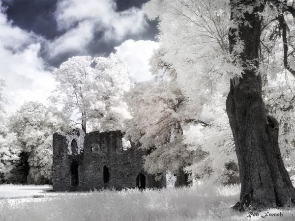 Netley Abbey.IR by frenchie44