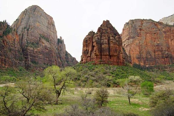 Big Bend Canyon - Zion, UT by jinstone
