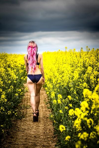Walk on the wild side... by steve_eb