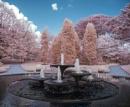 Cambridge University Botanic Gardens by Adee