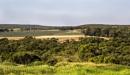 Australian Fields by Irishkate
