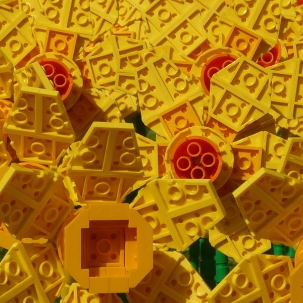 A host of golden LEGO daffodils