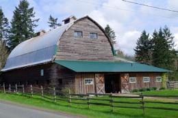 Horse training barn
