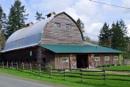 Horse training barn by tonyguitar