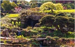 Wisley Rock Garden