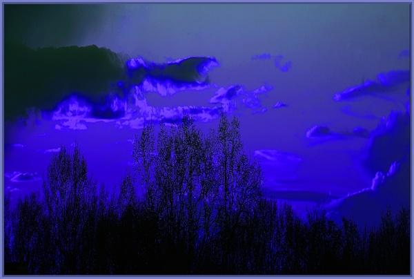 blue is the night by estonian