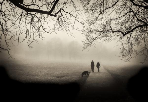 walk by mogobiker