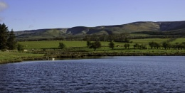 Fishing lake 2