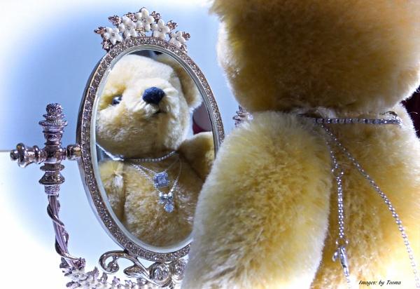 Terri Bear. by Tooma