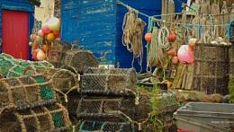 Fisherman's Garden.