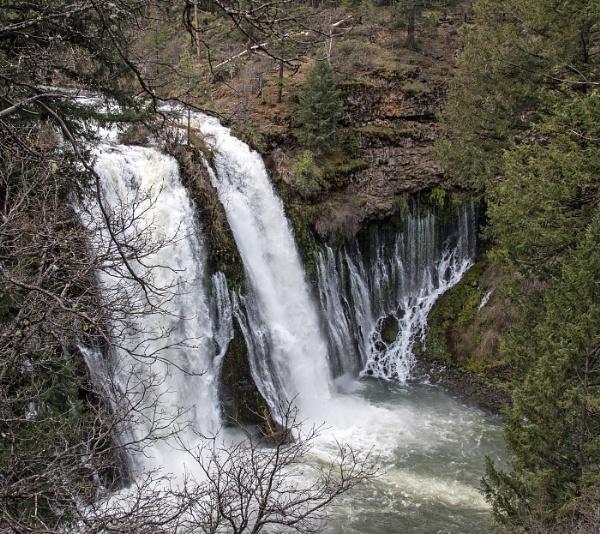 McArthur-Burney Falls by Janetdinah
