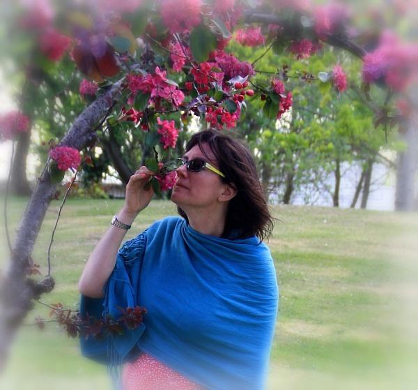 Blossom by RickNash