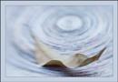 Twirling Leaf by Rende