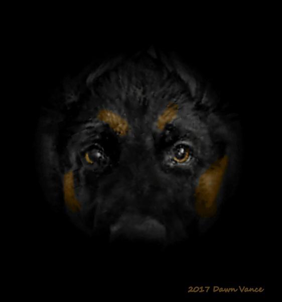 Apache by dawnmichelle