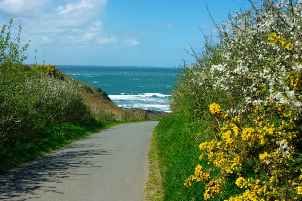 The walk down to Whistling Sands, by Art2105