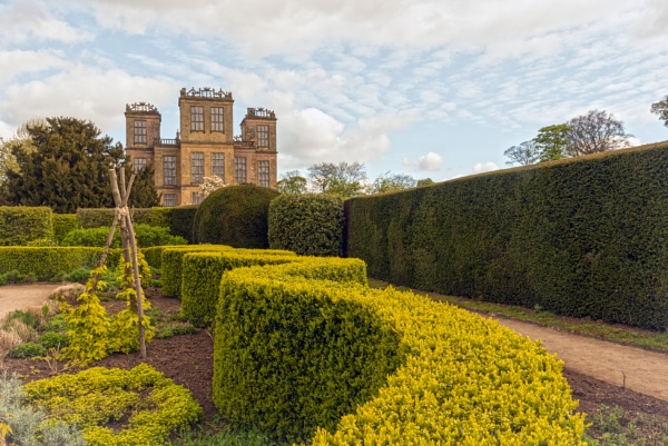 Hardwick Hall Gardens by mmart