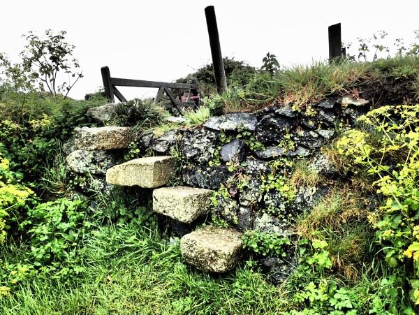 Wall steps by nclark