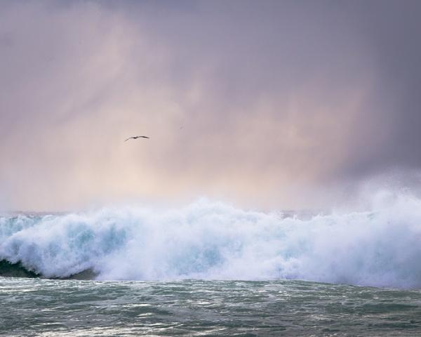 Cruel Sea by AnnChown