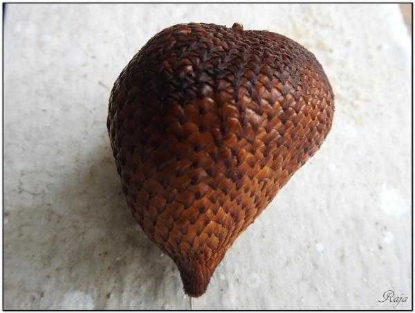 Salacca edulis by RajaSidambaram