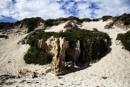 Quinn's Rock Beach by Irishkate