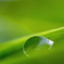 Droplet by Irishkate