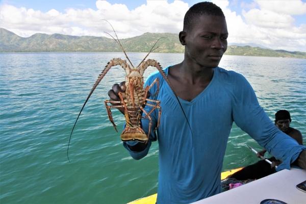 Crayfish by ANNDORASBOX