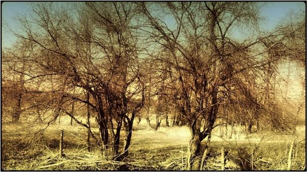 the old lands by FabioKeiner
