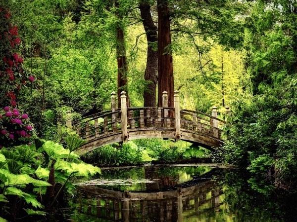 Bridge by victorburnside