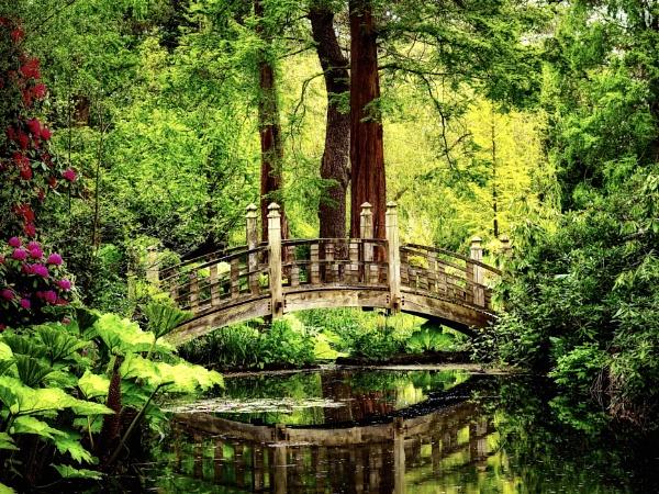 Japanese Bridge in Spring. by victorburnside