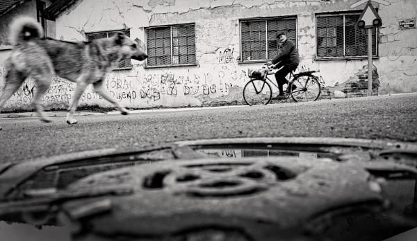 Urban Scene CXXV by MileJanjic