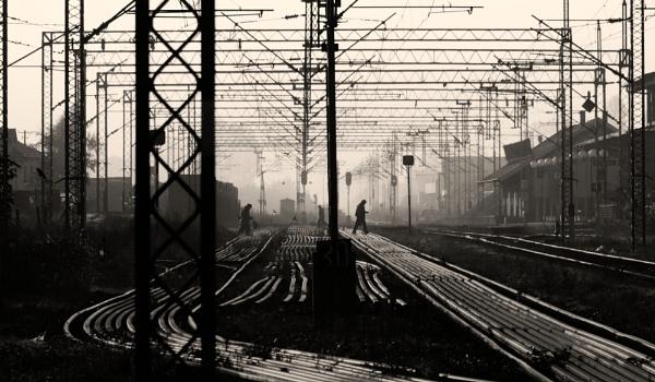 Railway Lines by MileJanjic