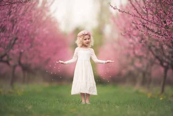 Spring Cometh by DVfoto