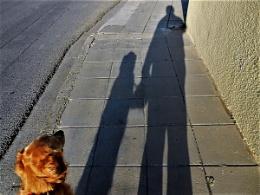 Rosie and Dad Saturday Shadows
