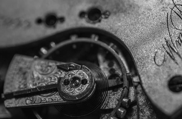 Pocket Watch Mechanism by DBoardman