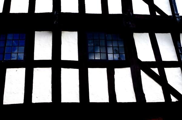 Tudor Abstract by Kako
