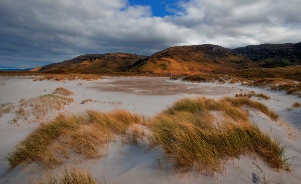 Hairy dunes by brzydki_pijak