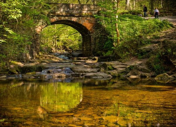 The Old Bridge at Midge Hall by tocketts