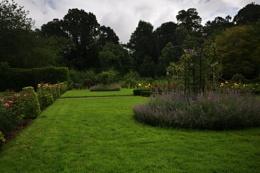 Garden scape