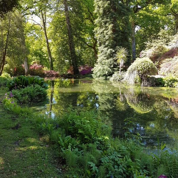 Exbury Gardens by sapphy