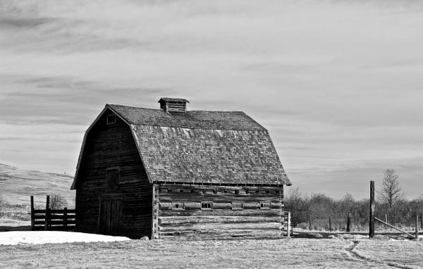 Ye  old  barn  two by waltknox