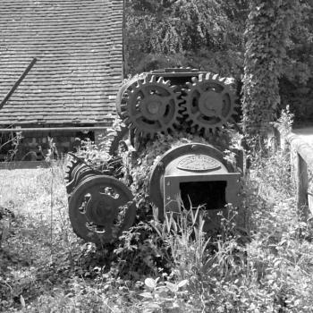 Garden of Machines.