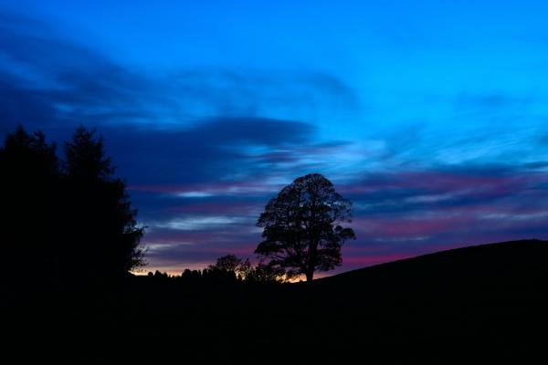 Sunset at Springholm Castle Douglas by sjcphotography