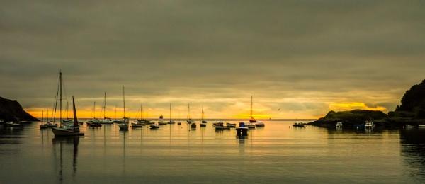 Silky dawn by andym56