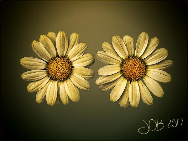 Side by Side by Big_Beavis