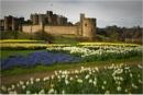 Alnwick Castle by MalcolmM