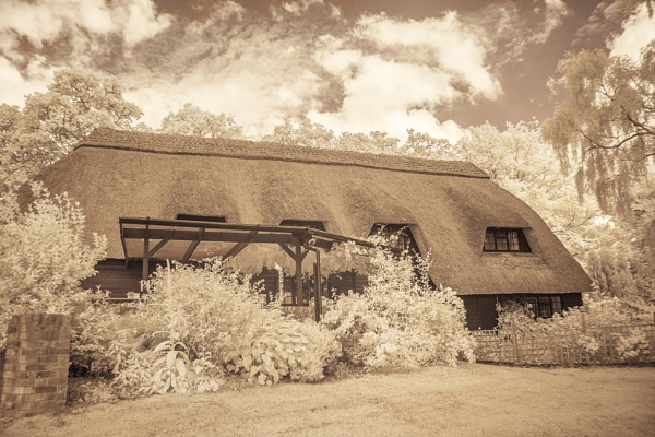 New forest cottage.IR by frenchie44