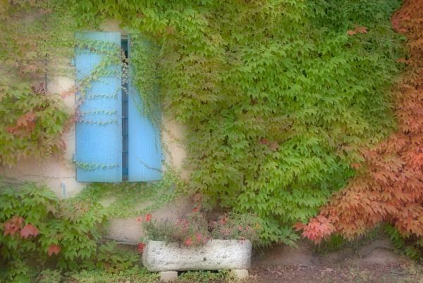 The Blue shutters by Zydeco_Joe