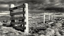 Shetland Fence